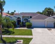 1848 Eagle Trace Boulevard, Palm Harbor image