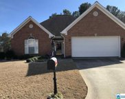 7365 Old Mill Trl, Trussville image