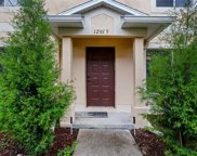 12915 Jessup Watch Place, Riverview image