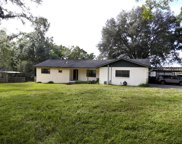 25502 Powell Road, Brooksville image