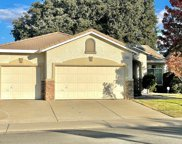 1141  Canvasback Circle, Lincoln image