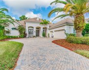 11950 Royce Waterford Circle, Tampa image