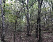 00 Tharptown Springs Rd, Russellville image