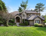 880 Wolverine Court, Castle Rock image