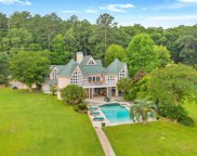 223 Tilden Point Circle, Chapin image