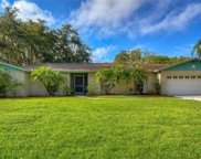 1115 Lady Guinevere Drive, Valrico image
