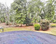 86 Percival Ct., Pawleys Island image