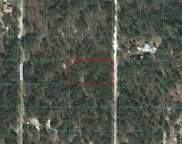 00 Sw 122nd Avenue, Dunnellon image