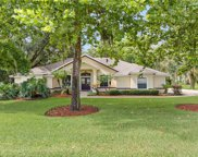 10101 Florida Boys Ranch Road, Clermont image