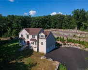 10 Red Fox  Run, Wolcott image