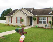 209 Pepperberry Ct., Conway image