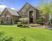 733 Millbrook Drive, Downers Grove image