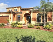 13215 Fawn Lily Drive, Riverview image