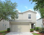 7827 Carriage Pointe Drive, Gibsonton image