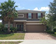 535 Belle Fern Ct, Ocoee image