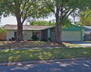 15911 Crying Wind Drive, Tampa image