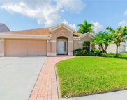 12518 Midpointe Drive, Riverview image