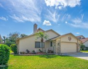 113 Skimmer Way, Daytona Beach image