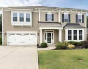 113 Belgian Blue Way, Fountain Inn image