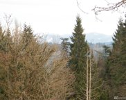 16100 95th Ave SE, Snohomish image