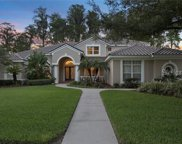 18214 Clear Lake Drive, Lutz image