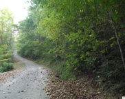 Lot 45 Riversong Way, Sevierville image