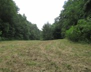88 ac. Modock Hollow Road, Celina image