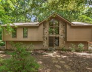 325 Parsons Branch, Johns Creek image