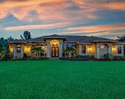 10542 Winterview Dr, Naples image