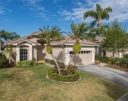 4008 Silk Oak Lane, Palm Harbor image