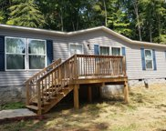 3500 Blue Springs Road Rd, Strawberry Plains image