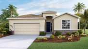 5311 Thistle Field Court, Wesley Chapel image