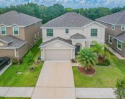 10803 River Hawk Lane, Riverview image