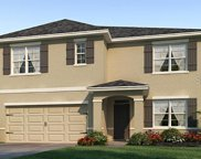 10309 Geese Trail Circle, Sun City Center image