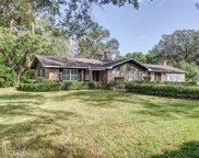 921 Cottage Hill Avenue, Mobile image