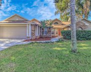 6224 Boone Drive, Tampa image
