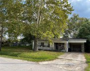 62 Luther Street, Houston image