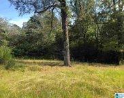 8251 Glendale Farms Road Unit vacant land, Trussville image