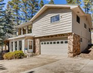 7967 S Brook Forest Road, Evergreen image