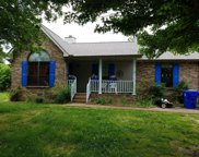 108 Indian Pointe Dr, White House image