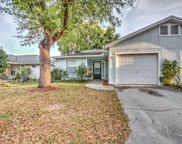 4417 Pine Meadow Court, Tampa image