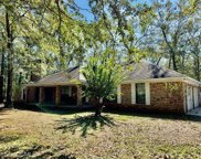 1003 Robert Williams Drive, Saraland, AL image