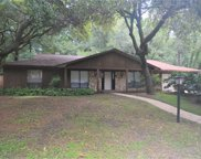 462 Burnt Tree Lane, Apopka image