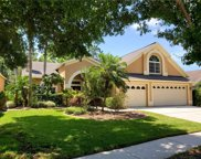 10209 Thicket Point Way, Tampa image