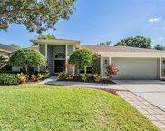 9405 Larkbunting Drive, Tampa image