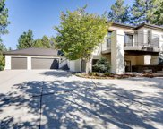122 Silver Leaf Way, Castle Rock image