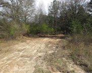 Shiloh Road, Piedmont image