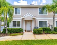 18163 Paradise Point Drive, Tampa image