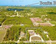 25750 Tropic Acres Dr, Bonita Springs image