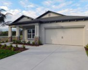11408 Acacia Grove Lane, Riverview image
